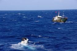 中国人船長をEZ漁業法違反で現行犯逮捕のサムネイル画像