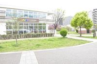 にじの森保育園.jpg